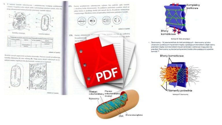 Matura notatki Budowa i funkcjonowanie komórki