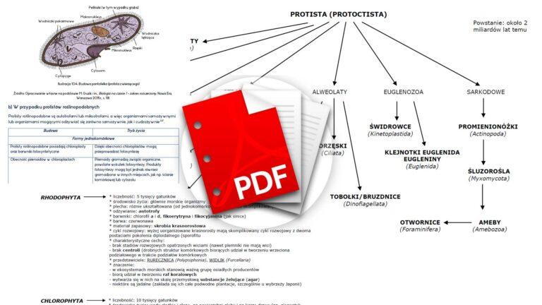 Biologia notatki Protisty i rośliny pierwotnie wodne
