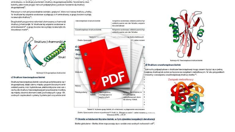 Biologia notatki budowa chemiczna organizmów